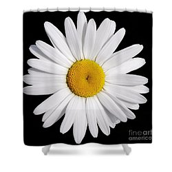 Perfectly Daisy Shower Curtain
