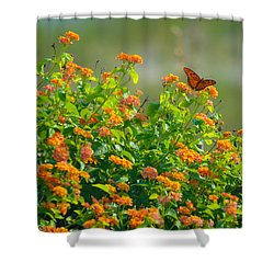 Perfectly Poised  Shower Curtain by Mary Ward