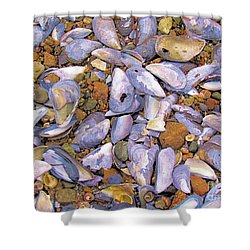 Periwinkles Muscles And Clams Shower Curtain