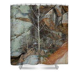 Shower Curtain featuring the photograph Perseverance by Mim White