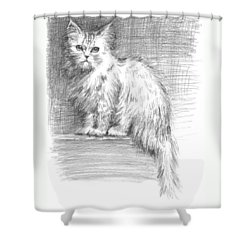 Persian Cat Shower Curtain by Sarah Parks