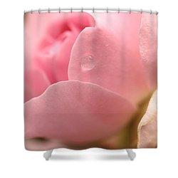 Persuasion Shower Curtain