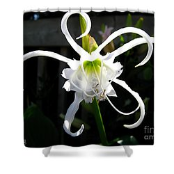 Peruvian Daffodil Named Advance Shower Curtain
