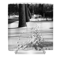 Pet Prints In The Snow Shower Curtain by Frank J Casella