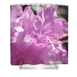 Petal Pink By Jrr Shower Curtain by First Star Art