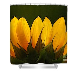 Petales De Soleil - A01 Shower Curtain by Variance Collections