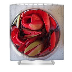 Petals In Vase  Shower Curtain