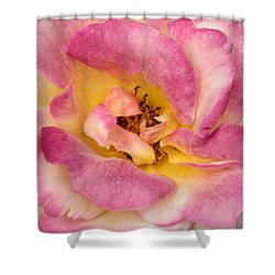 Petalsoft Perfection Shower Curtain