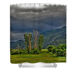 Petes Trees Shower Curtain