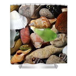 Petoskey Stones L Shower Curtain