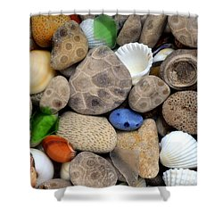 Petoskey Stones Lll Shower Curtain by Michelle Calkins
