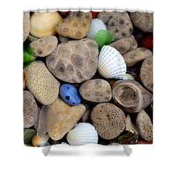 Petoskey Stones V Shower Curtain