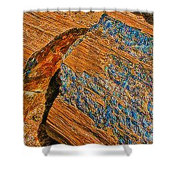 Petrified Forest Logs Shower Curtain by Bob and Nadine Johnston