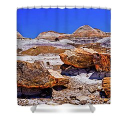 Shower Curtain featuring the photograph Petrified Forest - Painted Desert by Bob and Nadine Johnston