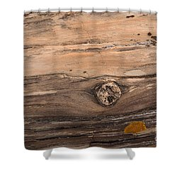 Petrified Wood Detail Shower Curtain by Vivian Christopher