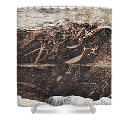 Petroglyph Bird Shower Curtain