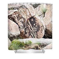 Petroglyph Shower Curtain