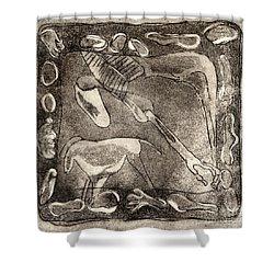 Petroglyph - Horse Takhi And Stones - Prehistoric Art - Cave Art - Rock Art - Cave Painters Shower Curtain