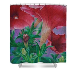 Petunia Skies Shower Curtain by Pamela Clements