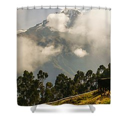 Peru Mountains With Cow Shower Curtain