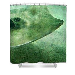 Phantom - Manta Ray Art By Sharon Cummings Shower Curtain by Sharon Cummings