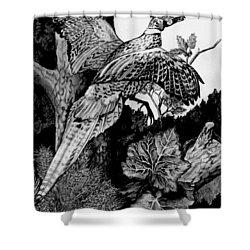 Pheasant In Flight Shower Curtain