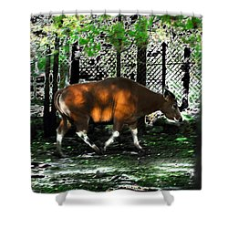 Phenomena Of Banteng Walk Shower Curtain