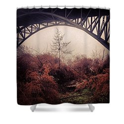Philadelphia Foggy Day Shower Curtain