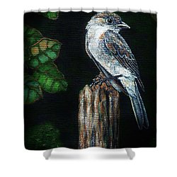 Shower Curtain featuring the painting Phoebe Drama by VLee Watson