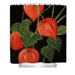 Physalis Shower Curtain by Anastasiya Malakhova