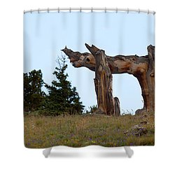 Pi In The Sky Shower Curtain by Jim Garrison