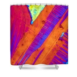 Piano Keys Shower Curtain by Tom Phillips