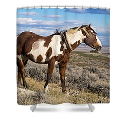 Picasso Of Sand Wash Basin Shower Curtain