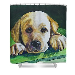 Pick Me Shower Curtain by Roger Wedegis