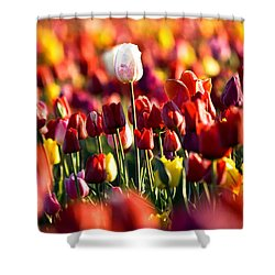 Pick Me Shower Curtain