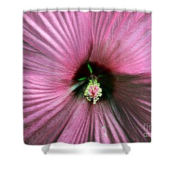 Pie Plate Hibiscus Shower Curtain