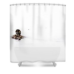 Pied-billed Grebe Babies Shower Curtain