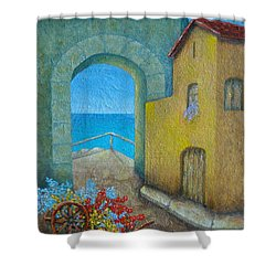 Pietrasanta In Tuscany Shower Curtain by Pamela Allegretto