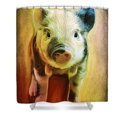 Pig Is Beautiful Shower Curtain by Barbara Orenya
