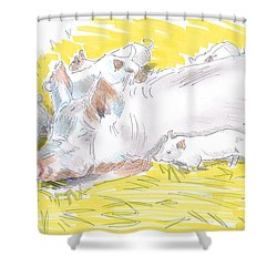 Pig Sow And Piglets Shower Curtain