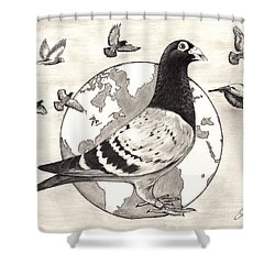 Pigeon Race Shower Curtain