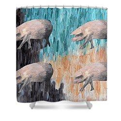 Piggies Shower Curtain by Patrick J Murphy