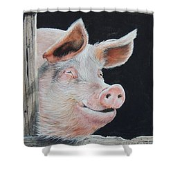Piggy.  Sold  Shower Curtain