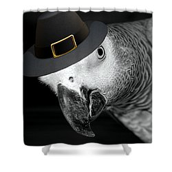 Pilgrim Parrot Shower Curtain