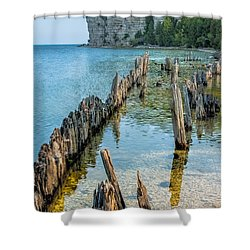 Pilings On Lake Michigan Shower Curtain by Paul Freidlund