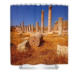 Pillars Of Ruin Shower Curtain by FireFlux Studios