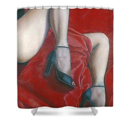 Pillow Shower Curtain by Mary Ann  Leitch
