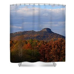 Pilot From Perch Road Shower Curtain