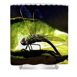 Pinao The Hawaiian Dragonfly Shower Curtain by Lehua Pekelo-Stearns