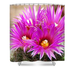 Pincushion Shower Curtain